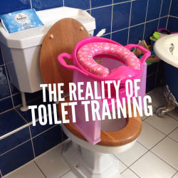 Meme Two The Reality of Toilet Training